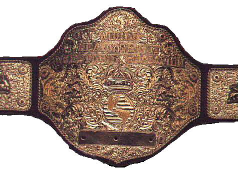 The newly minted PWO Heavyweight Title looks similar to this one.