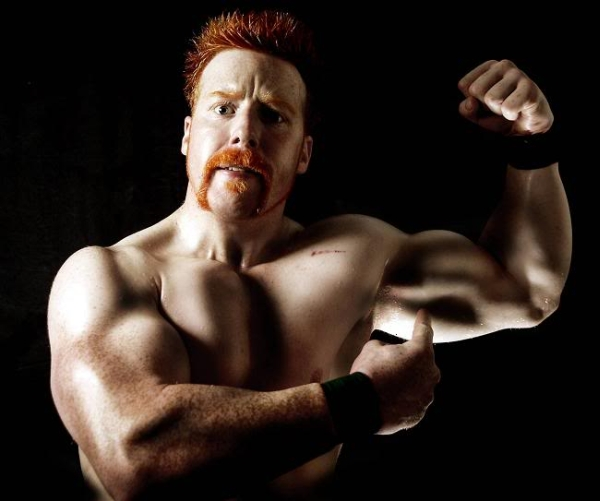 WrestleMania 26 Preview #4- Triple H vs. Sheamus