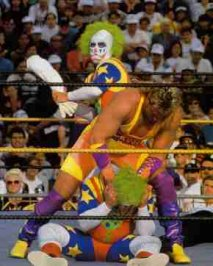 Stunt Granny Hall of Fame Inductees: Fun Wrestlers