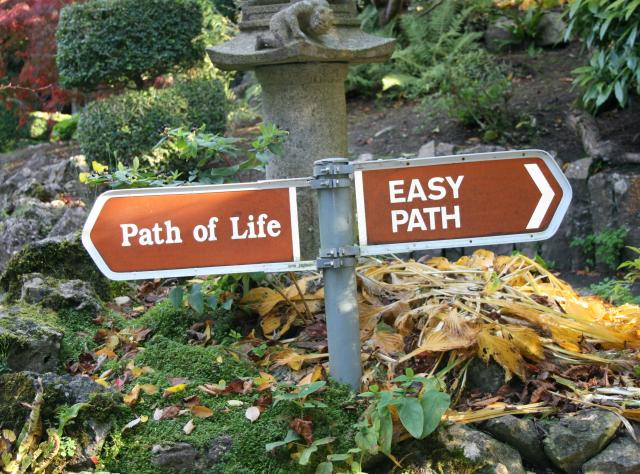 Kevin's Blog: Tough Enough Choice