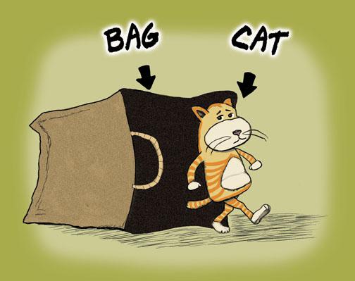catbag1