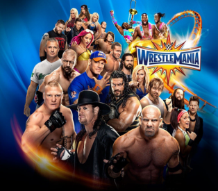 Stunt Granny Audio Presents: Wrestlemania 33 Review